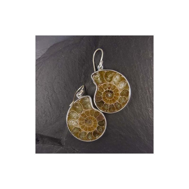 Ammonit Ohrringe hell